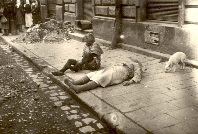 The Lviv pogrom of 1941   Lviv pogroms, Petlura days, July ...