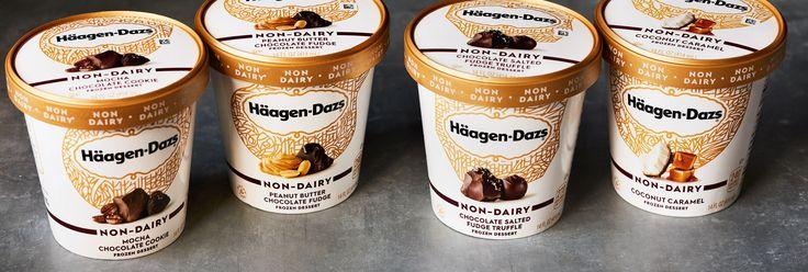 NEW! haagen dazs vegan ice cream!!