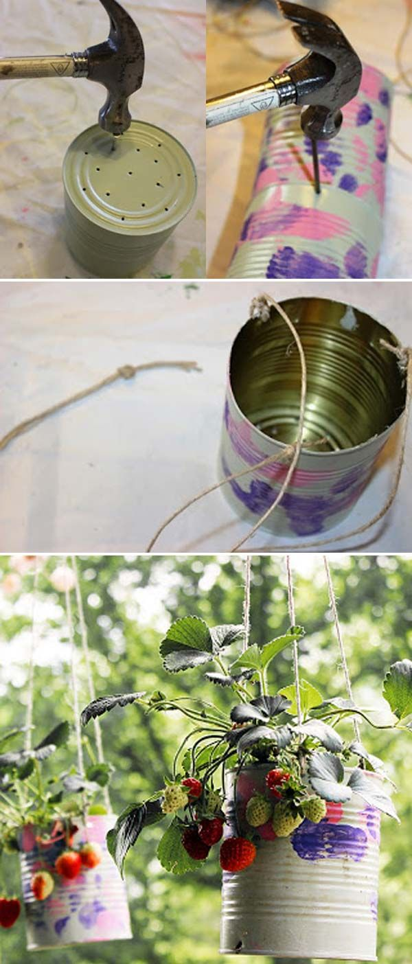 DIY hanging strawberry planters made from recycled tin cans and then paint them.