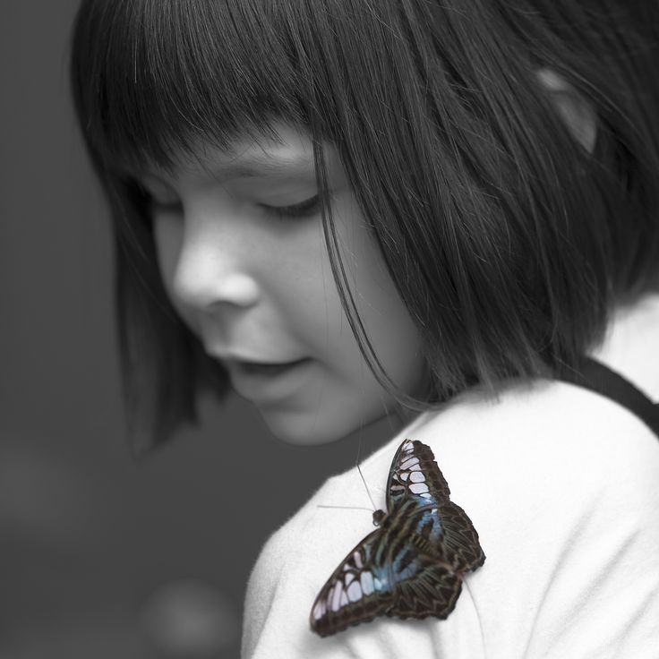Butterfly, don´t fly away