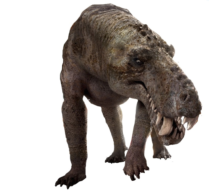 Gorgonops, this therapsid lived 250 million year ago, in the late Permian. Long before the dino's and mammals, this beasty roamed the earth.