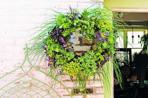 Use a ready-made peat moss wreath or make your own to create this living DIY herb garden crafts project. Hang it in the kitchen for fresh herbs year-round.