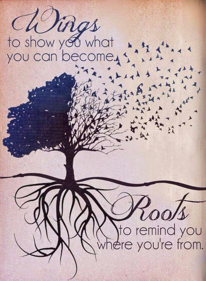 Wings and Roots!