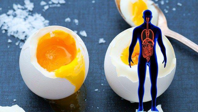 Ez történik a testével, ha napi 2 tojást fogyaszt el!