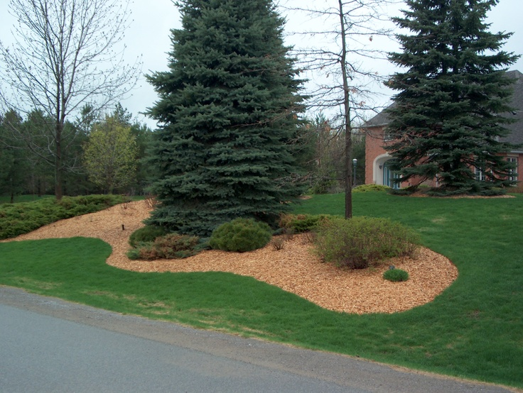 Wood Chips For Landscaping ~ Mulched garden example with plain wood chip mulch for