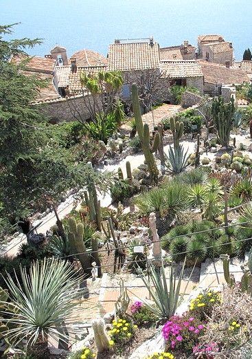 Le jardin exotique d' #Eze : un jardin suspendu au-dessus de la Méditerranée : Le #jardinexotique d'Eze, situé dans les ruines du château, est l'un des sites incontournables de ce village azuréen. En plus de sa remarquable collection de cactées et de plantes succulentes, ce jardin suspendu au-dessus de la Méditerranée offre un panorama à couper le souffle : une visite à ne pas manquer !