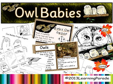 Our Owl Babies Story Unit has lots of activities and printables! Includes a math center and an original nonfiction text. Great for Autumn