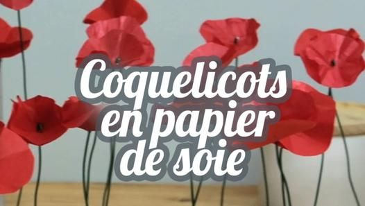 Tuto Coquelicots en papier de soie - DIY Lovely flowers with silk paper