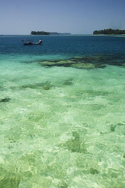 Pulau adalah sebidang tanah yang lebih kecil dari benua dan lebih besar dari karang, yang dikelilingi air. Kumpulan beberapa pulau dinamakan pulau-pulau atau kepulauan (bahasa Inggris