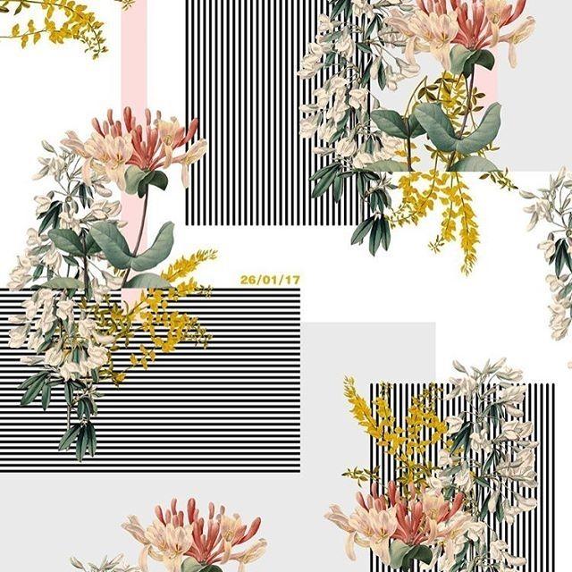 rebeccamatthews19 Saturday stripes 3 #surfacespatterns #print #pattern #floral #stripes #blackandwhite #surfacedesign #patterndesign