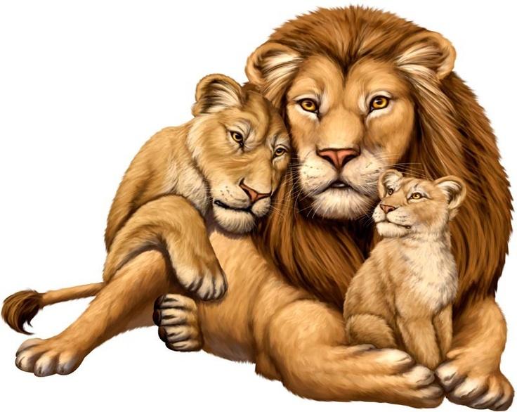 Картинки для детей лев и львенок, картинки