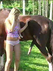 porno sex hayvanlı