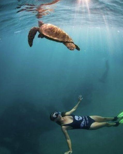O C E A N W A R R I O R S ✖️ 15% of Sea Shepherd profits go to Ocean Conservation! #GypseaWarriors #SavetheSeas