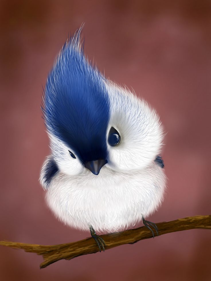 2D speed painting _ Bird