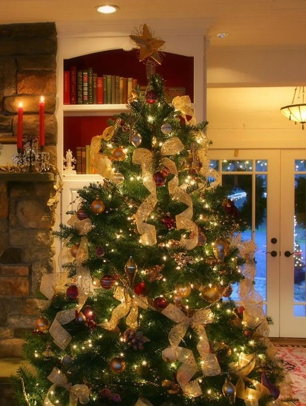 150 best Wow! They are the best Christmas trees! images on ...