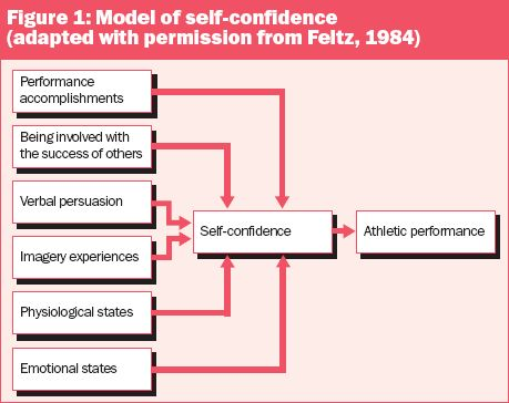 the effects of athlete self confidence Ch 14 self confidence  the four-step process concerning the formation of coach expectations and their effects on the coach's and athlete's behavior signifies that.