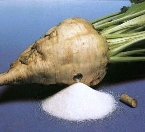 Turn a sugar beet into sugar...  http://www.homesteadingfreedom.com/make-your-own-sugar/