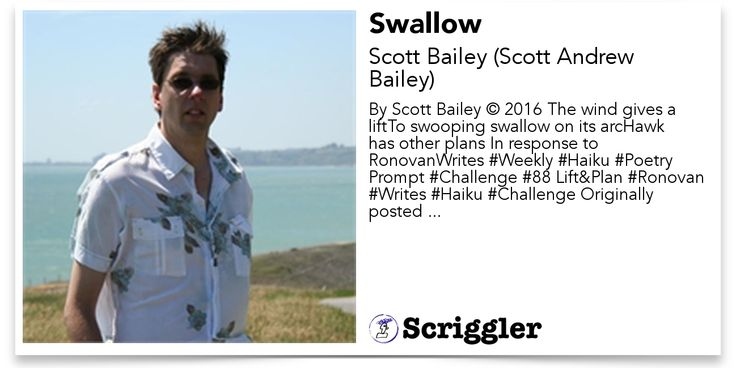 Swallow by Scott Bailey (Scott Andrew Bailey) https://scriggler.com/detailPost/story/31191