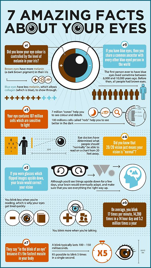 Amazing Facts about #HumanEye