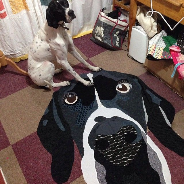"""""""Hank, Frankly"""". A quilt by Kerry at Penny Dog Patchwork. Bloggers Quilt Festival - Spring 2015. Here is Hank himself, admiring the quilt."""