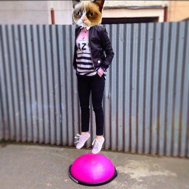 Další ze série Grumpy Cat ... Jsem prostě kočka!   Pondělí: 19:00 Jumping/RelaxTeplice  Úterý: 17:00 Bosu/ RelaxTeplice & 18:00 Flowin/RelaxTeplice  Pátek 18:00 Bosu/EuforieŽižkov  Neděle 10:00 Létající Jóga/PoleTime Praha ... Rezervace nutné kdyžtak napiš ... Uděláme si krásná těla jako děla!  #aerialserial #newweek #fitness #workout #yoga #bosu #flowin #namaste / #wemotoclothing #lazyoaf #vansczsk by bacidani