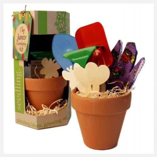 Seedling   The Junior Gardening Kit at little green footprints
