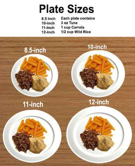 Usn fat loss products photo 9