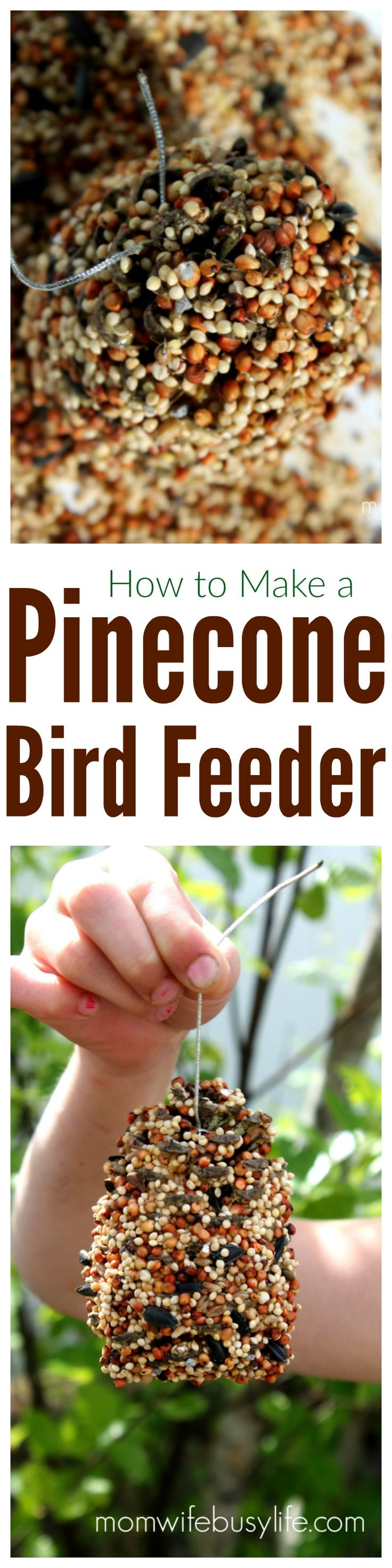 How to Make a Pinecone Bird Feeder with Peanut Butter | Homemade Pinecone Bird Feeder | Piecone Bird Feeder Craft for Kids