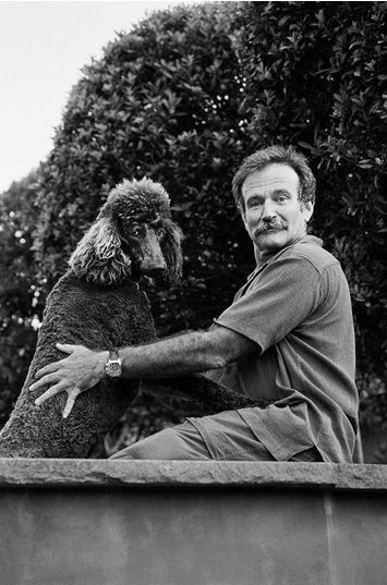 Robin Williams with his poodle, Kiwi, San Francisco, 2012
