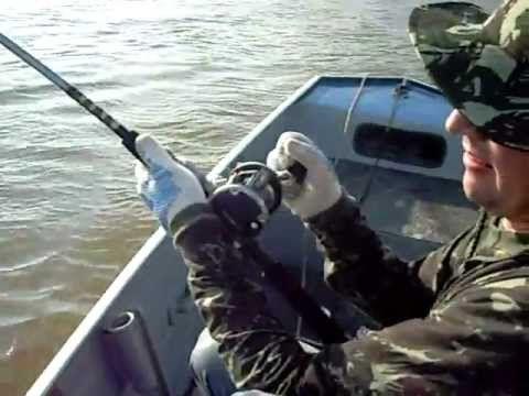 Pirarara de 27kg fisgada no Rio Guaporé, próximo a Pimenteiras-RO na divisa com a Bolívia. Pescadores/Cameras: Meu irmão e eu. Piloteiro: Paulinho. Pousada Vale do Guaporé.