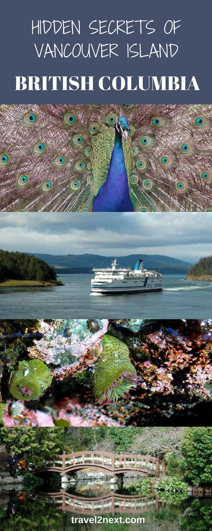 Hidden secrets of Vancouver Island, British Columbia, Canada.