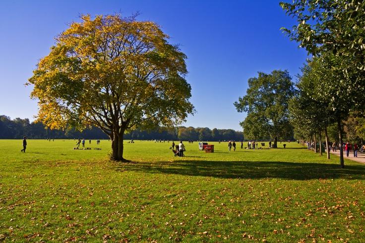 Stadtpark (city park) in Hamburg, Germany