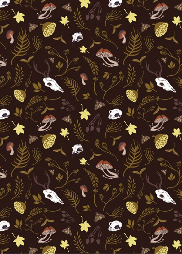 Cabinet of Curiosity Pattern Collection on Behance