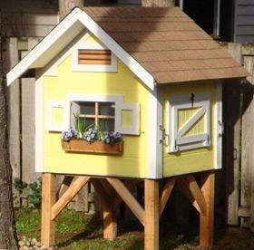I want my chickens to have their own window box to I want to design my own home
