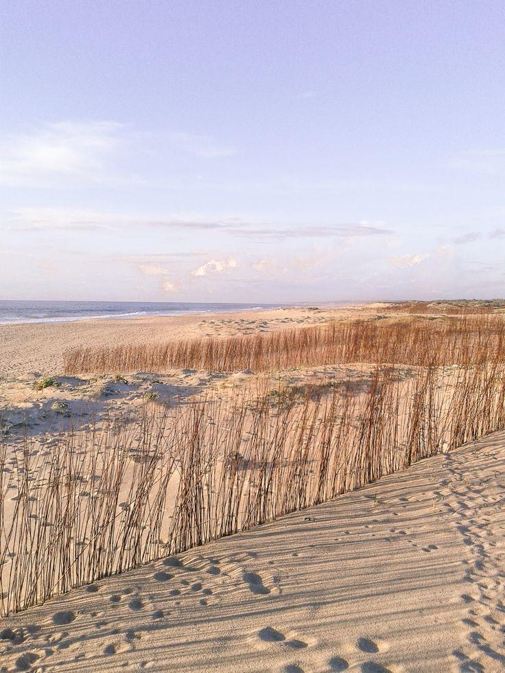 Praia de Vila Nova de Santo André #Alentejo em abril, 2016. #Portugal #casanaaldeia.com