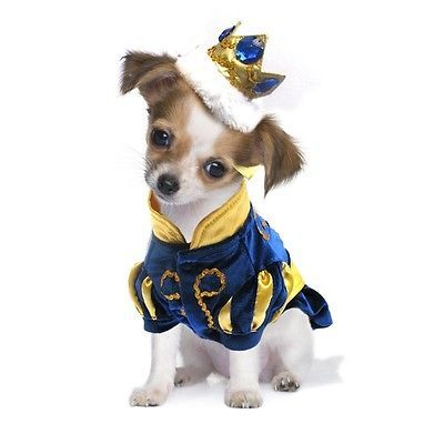 Costumes 52352: High Quality Dog Costume - Prince Charming Costumes - Dress Your Dogs As Princes BUY IT NOW ONLY: $56.6