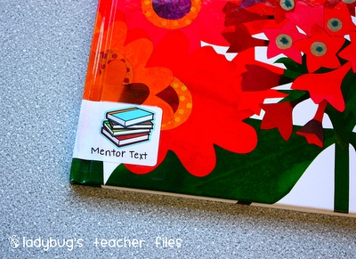 how to organize classroom read alouds