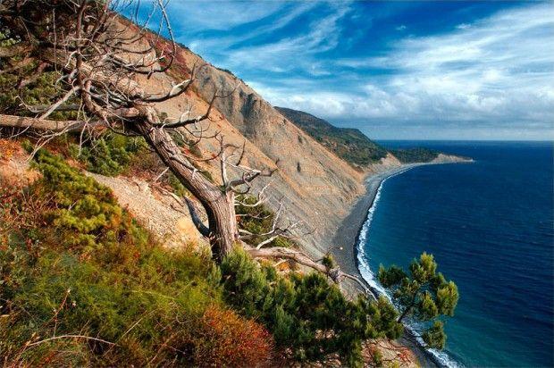 Утриш, побережье Черного моря, Краснодарский край. Krasnodar region, Utrish