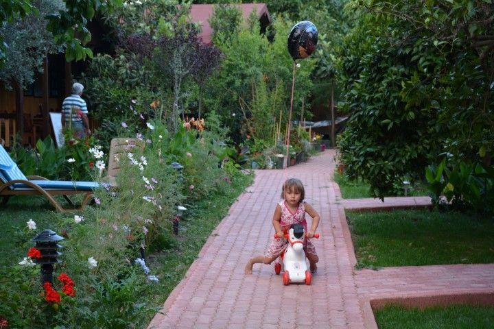 Çıralı Caretta Caretta Pansiyon Antalya ..... #cirali #ciralihotel #ciralipension #ciralihostel #pension #hostel #lodge #ciralilodge #layover #urav #antalyahotels #antalyapension #antalyalodge #antalya  #mediterranean #chimera #ciraliapart #antalyaapart #bungalow