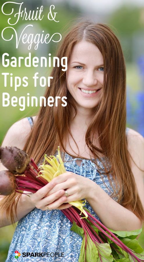 A Beginner's Guide to Fruit and Vegetable Gardening   via @SparkPeople #gardening #spring #healthyliving