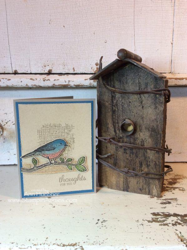 Bluebird Card with Best Birds Stampin' Up!, Bird Lovers, Birds Cards Handmade,