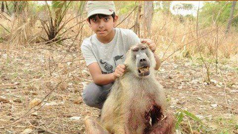 Sponsor United Republic of Tanzania: End the Barbaric Slaughter of Wild Animals in Tanzania!