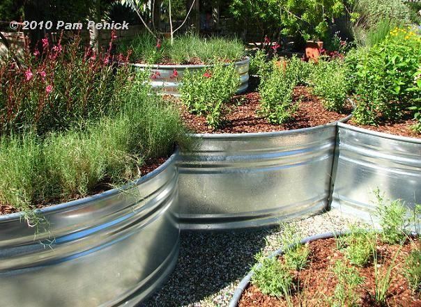 Stock Tank Planters Gone Wild Digging Garden