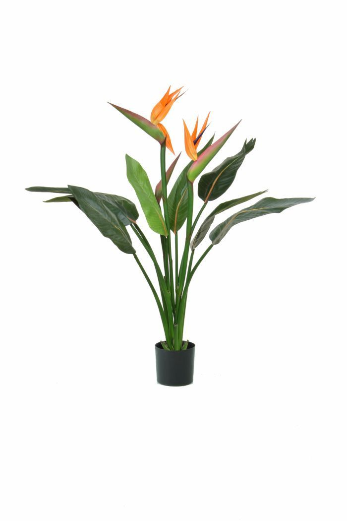 Artificial Silk Tropical Bird Of Paradise Plant Fr Just Artificial Birds Of Paradise Plant Paradise Plant Plants