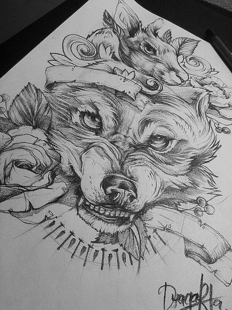 wolf drawing with some roses around. #tattoo #tattoos #ink #inked