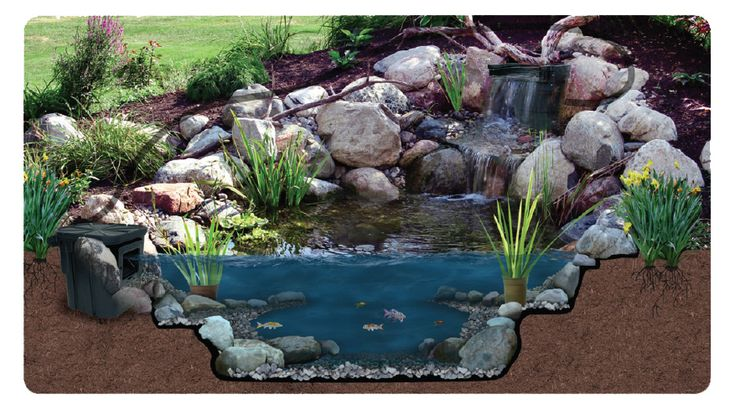 Back Yard Pond Kits | Pond Kits, Koi Pond Kit, Waterfall Kits