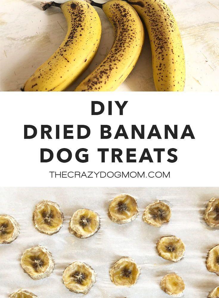 Dried Banana Dog Treat Recipe in 2020
