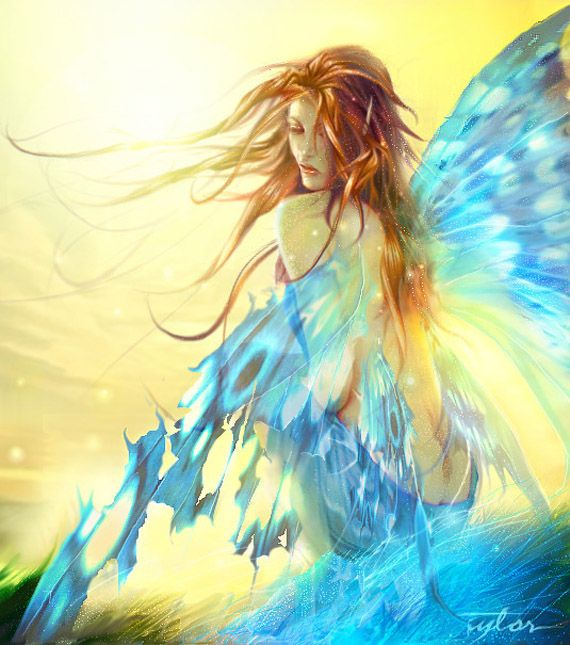 .: Brunettes Hair, Butterflies, Wings, Fantasy Art, Fairies Photo, Blue Angel, Taylors, Elves, Blue Art