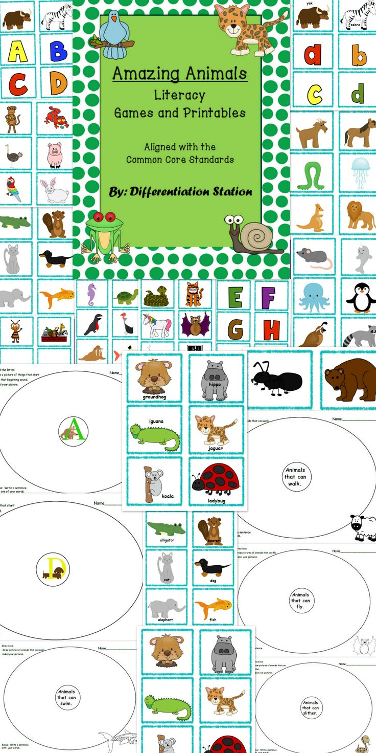 Amazing Animals: Literacy Games and Printables.  Alphabet: upper and lowercase letters.  Beginning sounds, sort animals by characteristics.  Preschool, kindergarten, special education, homeschool. $