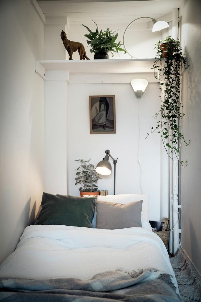 Tiny space. Love the plants.#minimal decor.#plant#…